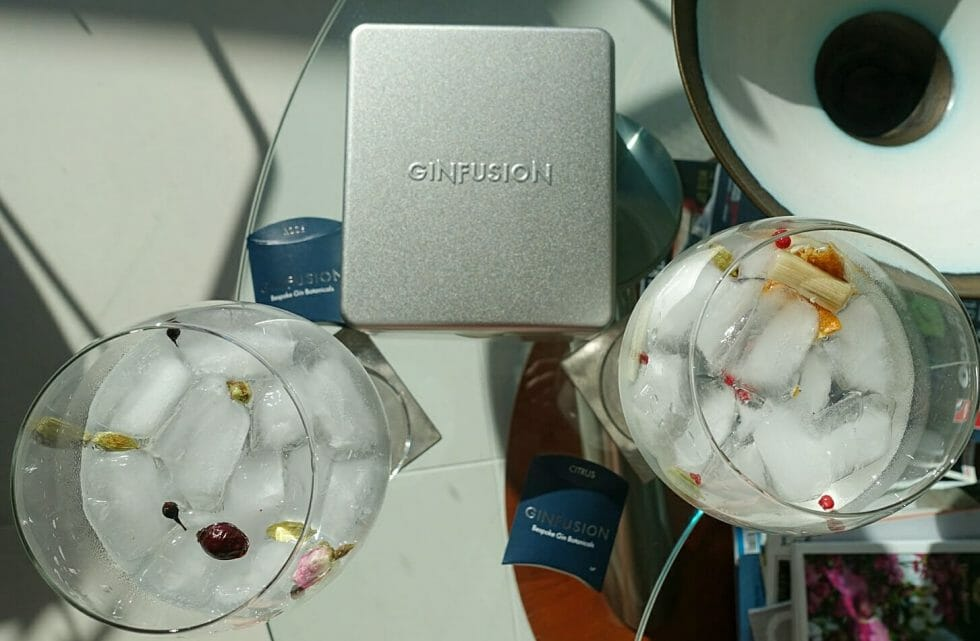 Ginfusion classic tin and packs of garnishes