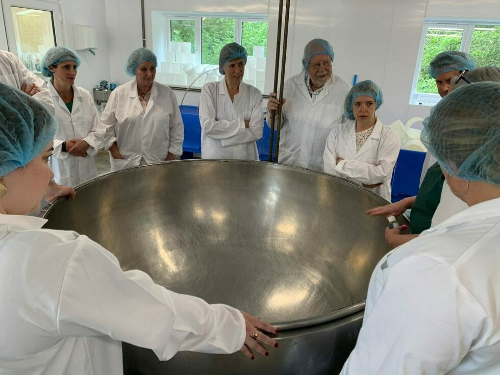 The large stainless steel bowl used to make the cheese