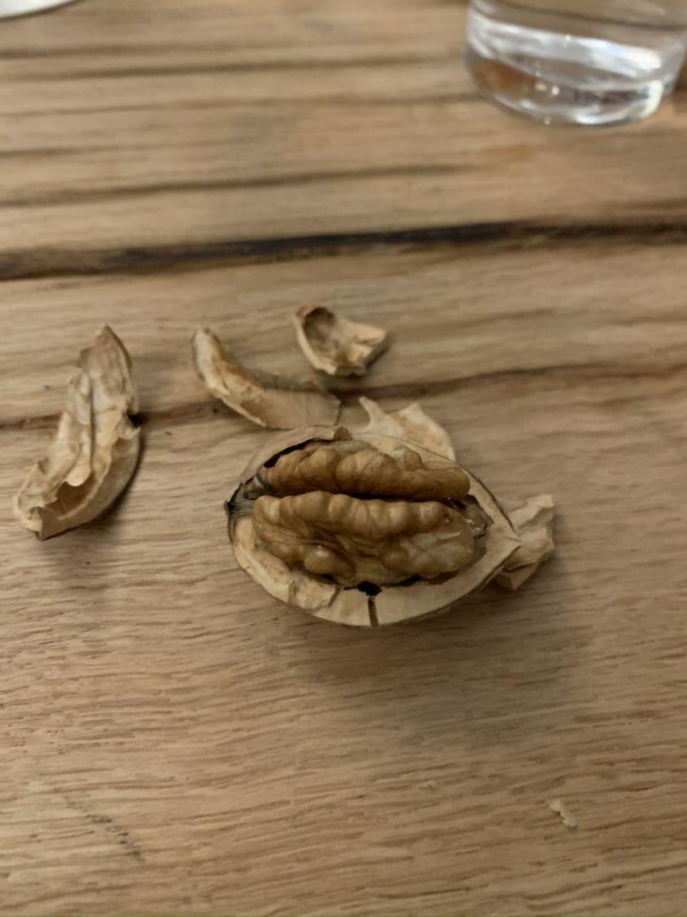Walnut in its open shell