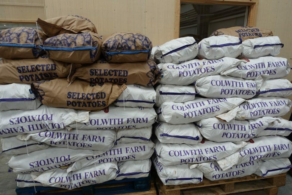 Piles of potatoes
