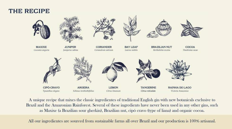 Amazzoni botanical drawings courtesy of Amazzoni gin