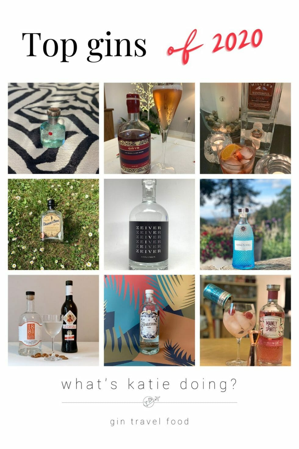 Top gins of 2020