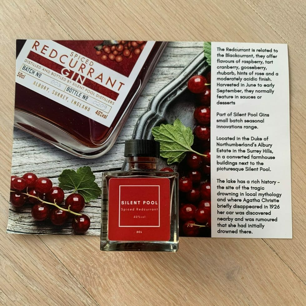 Silent Pool Spiced Redcurrant gin & fact card